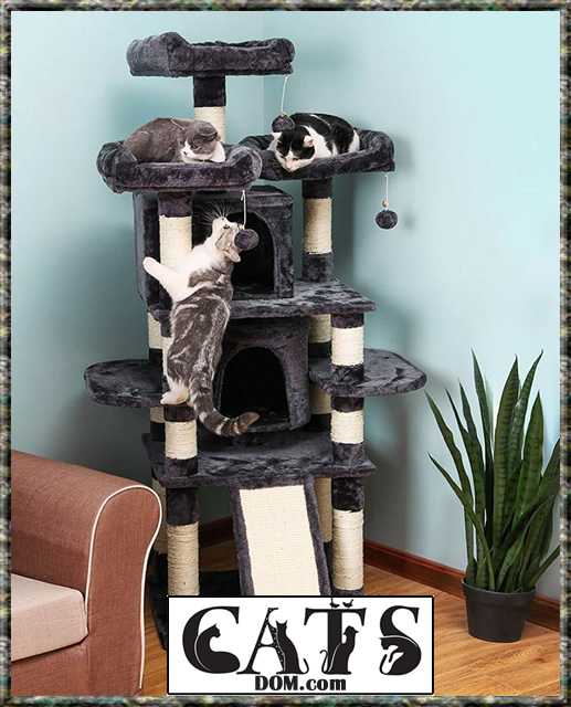 Best Cat Trees Multiple Large Cats 1
