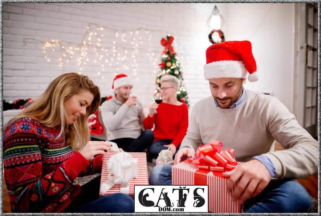 Best Christmas Gifts for Cat Lovers to buy this year Age of the cat lover