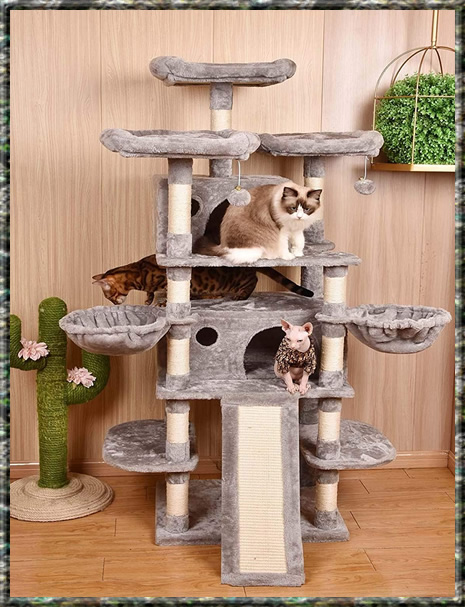 Cat Trees Multiple Large Cats