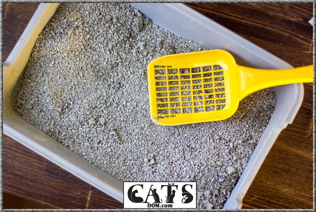 Cats Best litter box Ease of cleaning