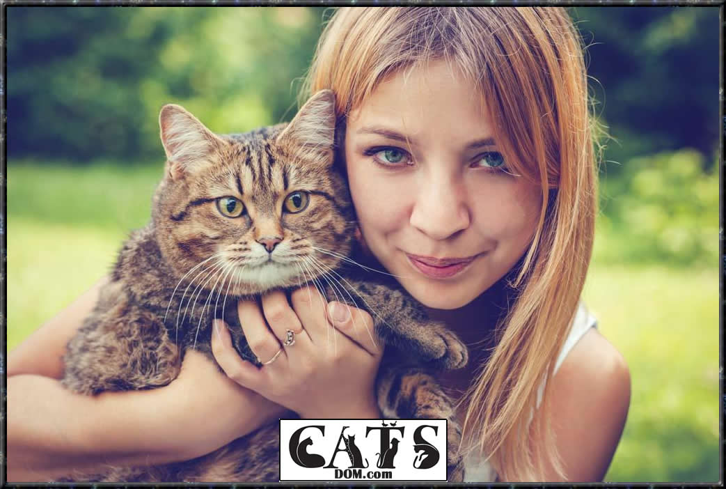 www.catsdom.com The Best Dewormer for Cats Keep the nasty parasites at Bay Safety