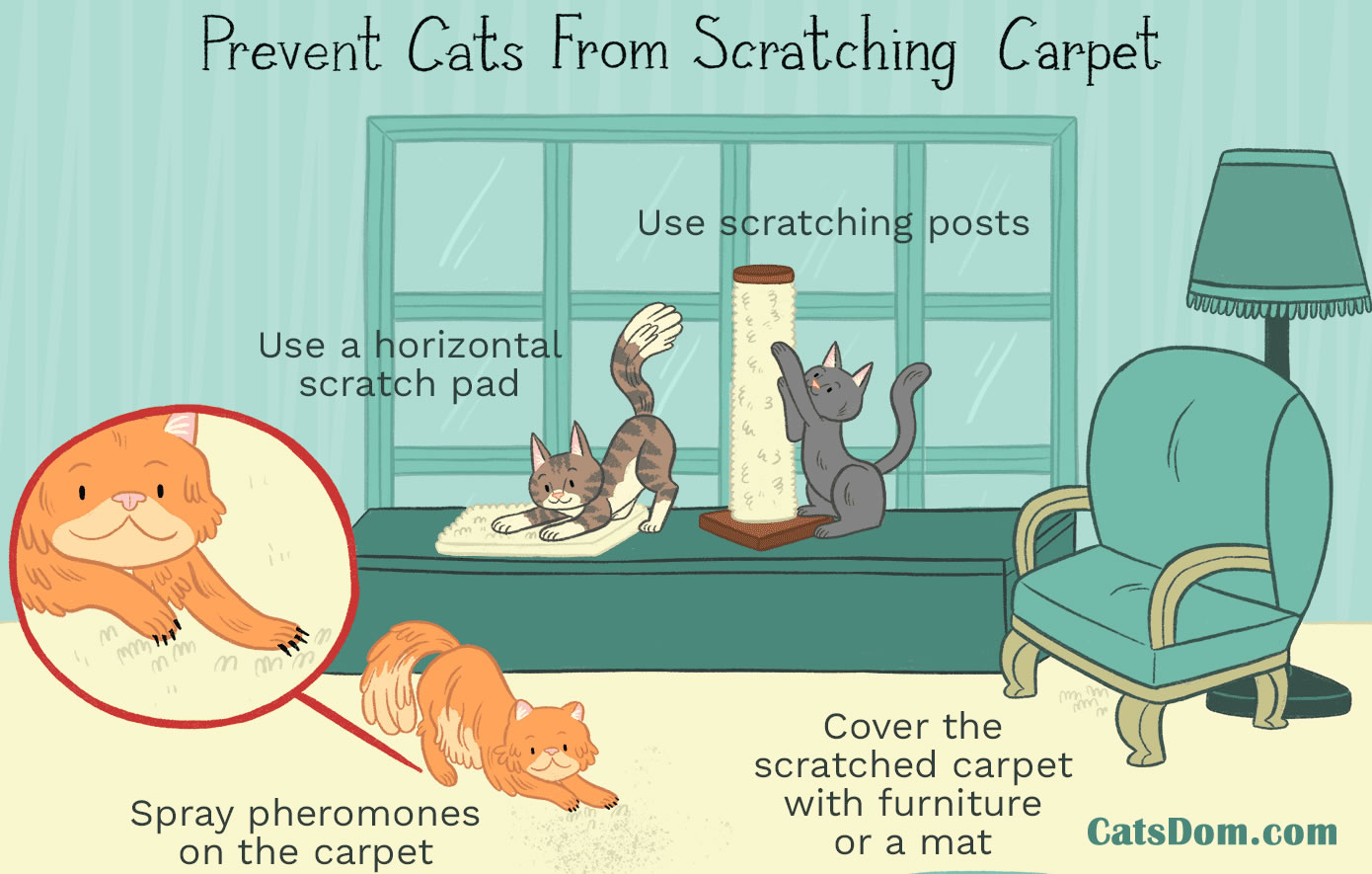 stop cats from scratching carpet tips